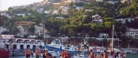 Bous a la mar Javea